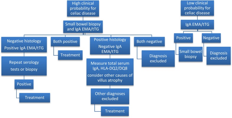 Neurological Manifestations Diagnosis And Treatment Of Celiac Disease A Comprehensive Review Abstract Europe Pmc