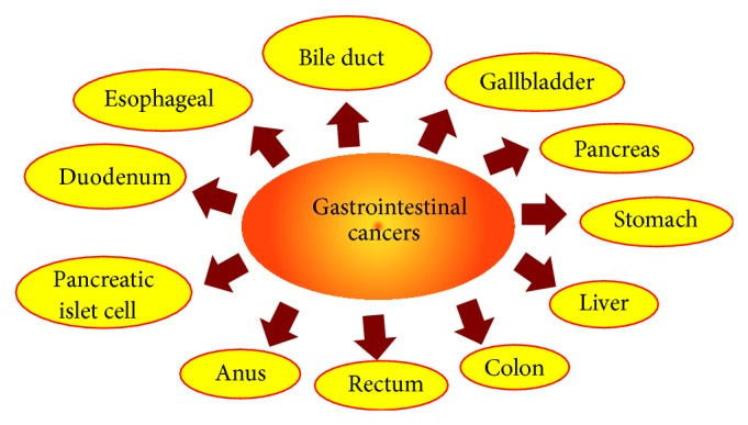 Ginger And Its Constituents Role In Prevention And Treatment Of Gastrointestinal Cancer Abstract Europe Pmc