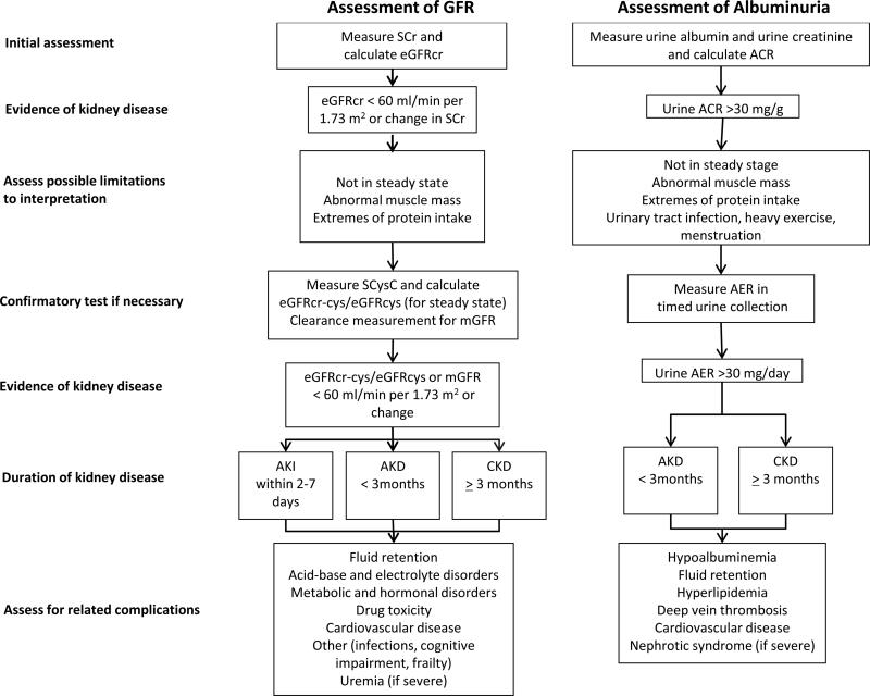 Glomerular Filtration Rate And Albuminuria For Detection And Staging Of Acute And Chronic Kidney Disease In Adults A Systematic Review Abstract Europe Pmc