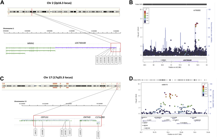 A Genome Wide Screening And Snps To Genes Approach To Identify