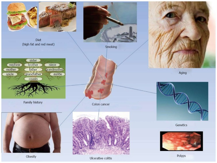 Insight To Drug Delivery Aspects For Colorectal Cancer Abstract Europe Pmc