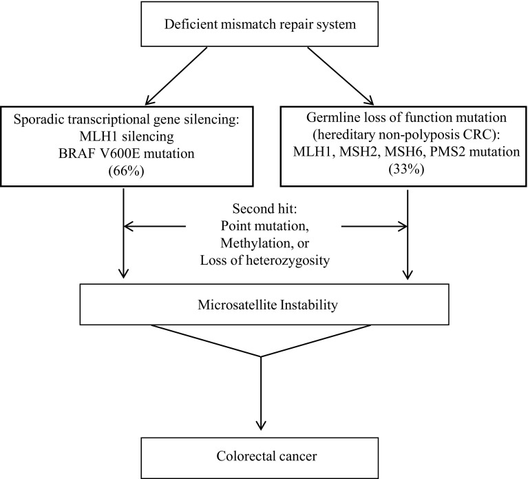 Hereditary Cancer Syndromes Utilizing Dna Repair Deficiency As Therapeutic Target Abstract Europe Pmc