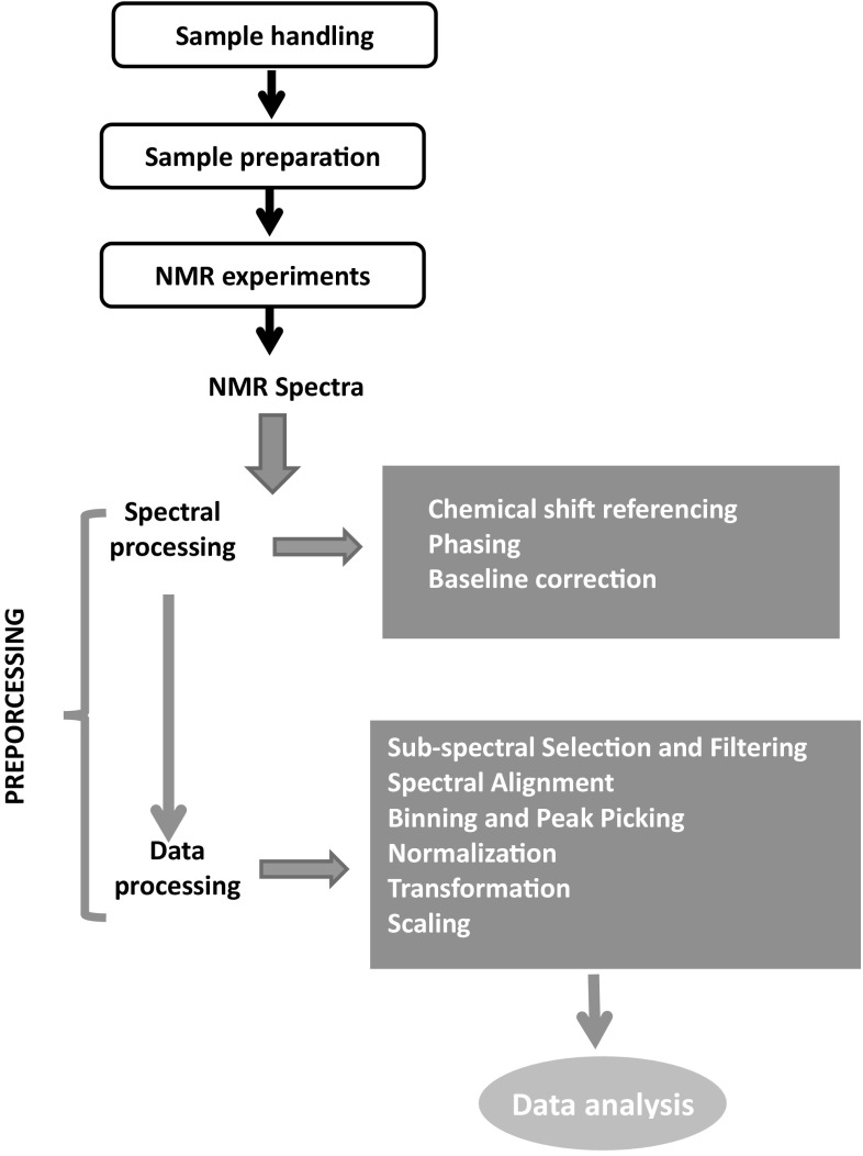Recommended Strategies For Spectral Processing And Post Processing