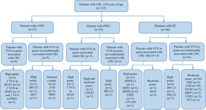 Mutation Spectrum Of Cancer Associated Genes In Patients With Early Onset Of Colorectal Cancer Abstract Europe Pmc