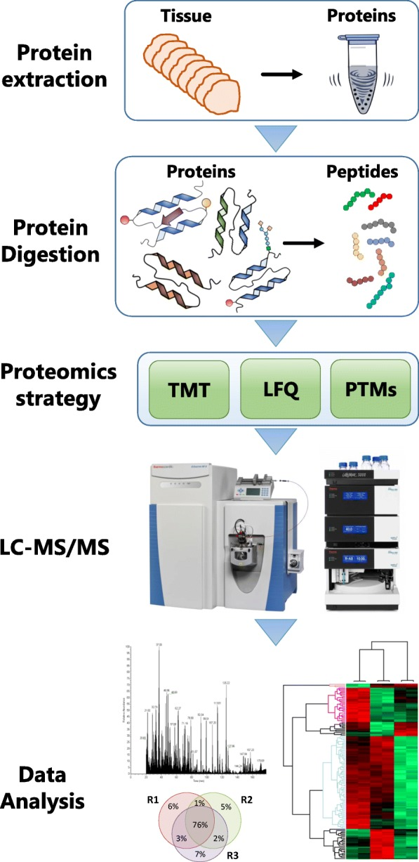 Clinical Protein Science In Translational Medicine Targeting