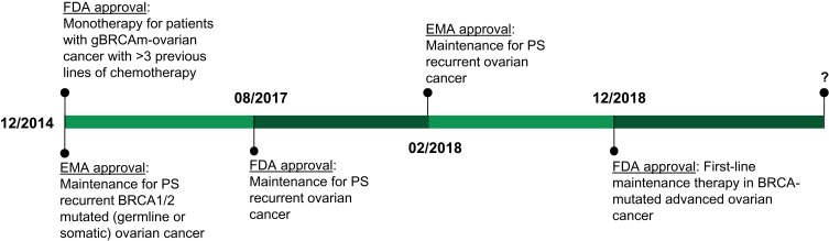 Role Of Olaparib As Maintenance Treatment For Ovarian Cancer The Evidence To Date Abstract Europe Pmc