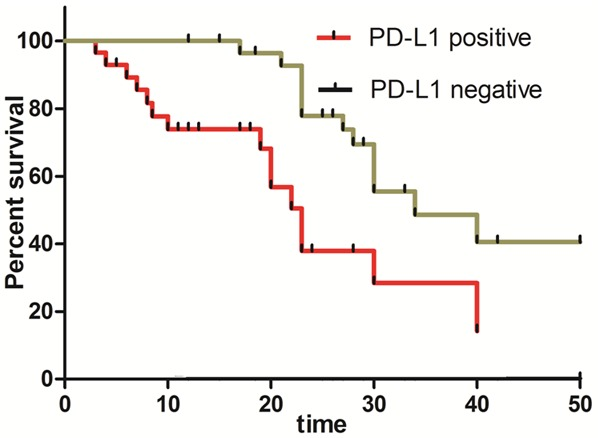Pd L1 Expression In Colon Cancer And Its Relationship With Clinical Prognosis Abstract Europe Pmc