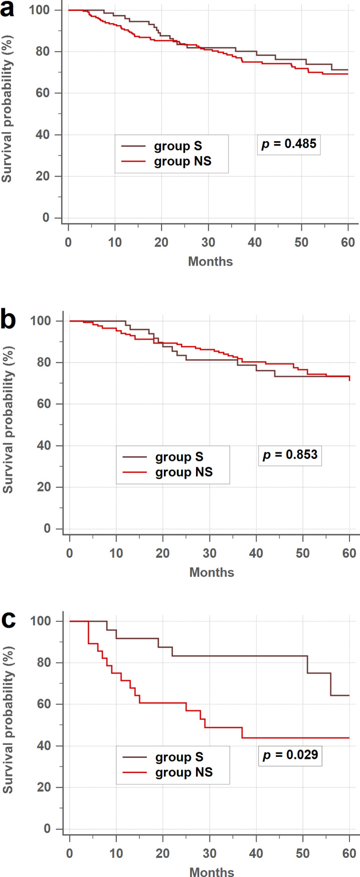Prognostic Value Of Postoperative Serum Carcinoembryonic Antigen Levels In Colorectal Cancer Patients Who Smoke Abstract Europe Pmc